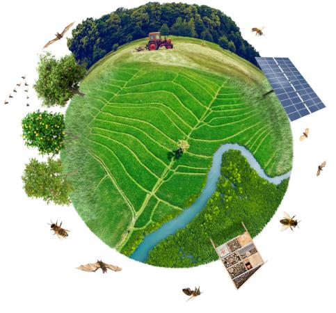 Planeta verde con animales e insectos